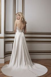 Justin Alexander Wedding Dress 8801 Back
