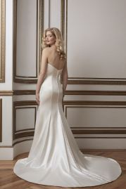 Justin Alexander Wedding Dress 8802 Back