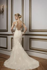 Justin Alexander Wedding Dress 8812 Back