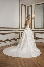 Justin Alexander Wedding Dress 8825 Back